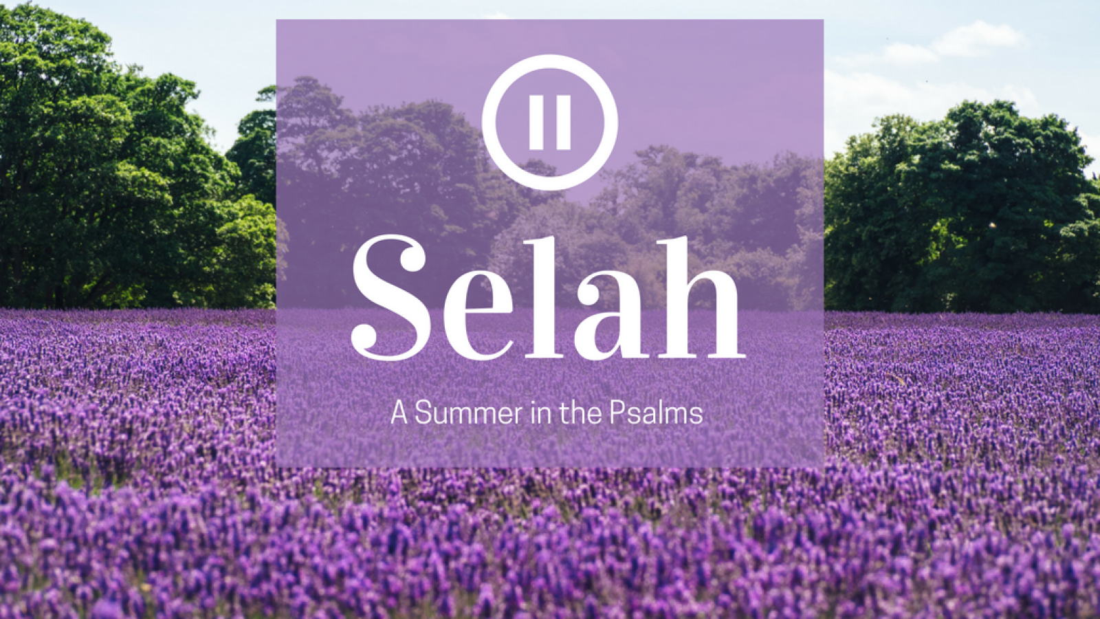 Selah: A Summer in the Psalms